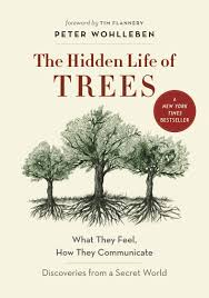 The Hidden Life of Trees: What They Feel, How They Communicate ...
